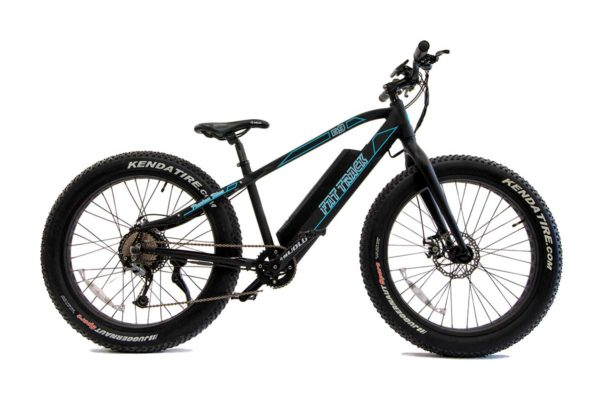 E9 Fat Track mountain e-bike