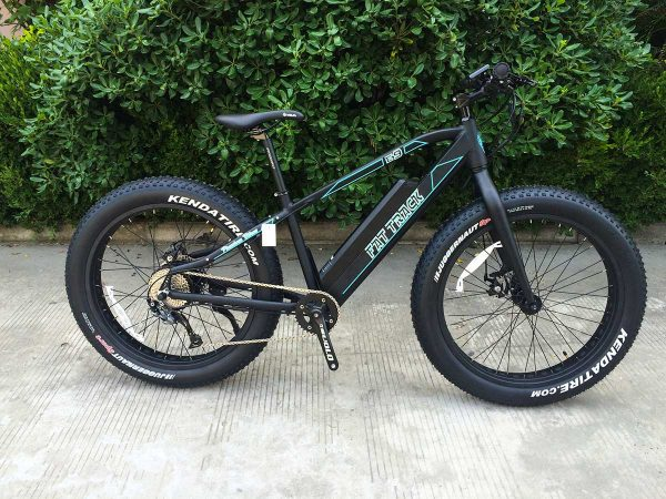 Fat Track, electric motor mountain bike by Phantom Bikes, with bushes in the background