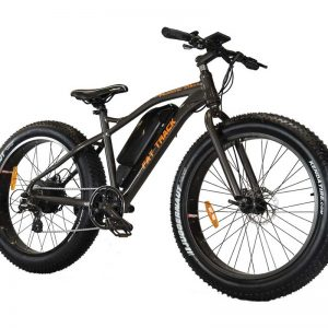 Fat Track Electric Bike